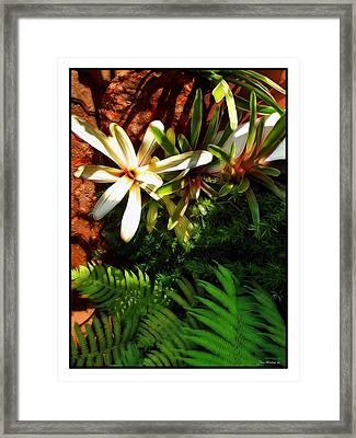White Maui Flowers Framed Print by Joan  Minchak