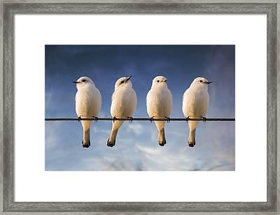 White Monjita Framed Print