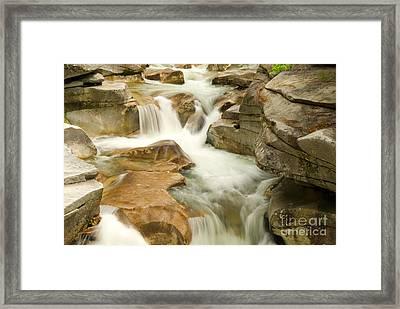 White Mountain Stream Framed Print by Alana Ranney