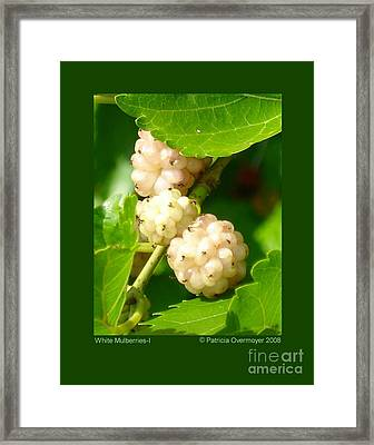 White Mulberries-i Framed Print