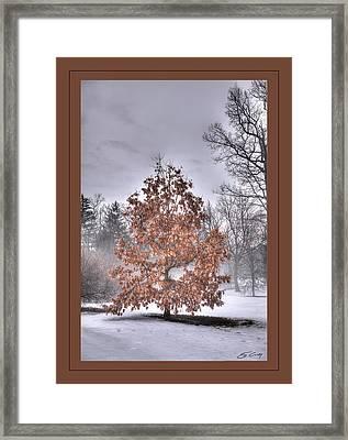 Framed Print featuring the digital art White Oak In Fog  Framed by Ed Cilley