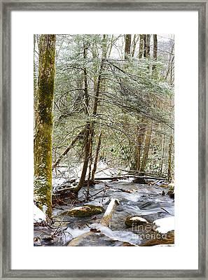 White Oak Run In Winter Framed Print by Thomas R Fletcher