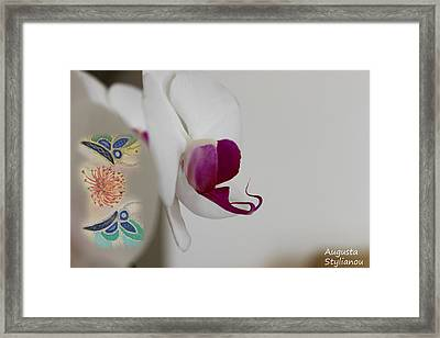 White Orchid And Butterfies Framed Print by Augusta Stylianou