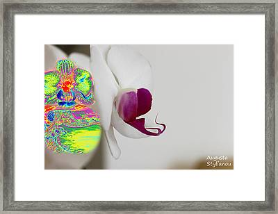 white Orchid and Landscape Framed Print