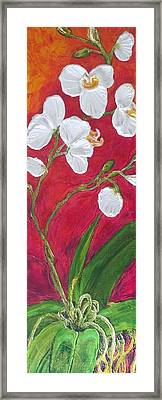 White Orchids On Red Framed Print by Paris Wyatt Llanso