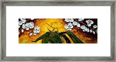 White Orchids Framed Print by Paris Wyatt Llanso