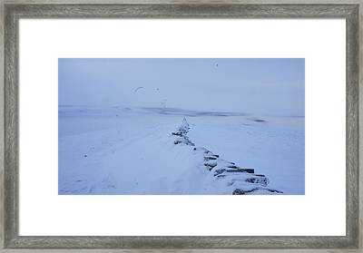 White Out Framed Print by Riley Handforth