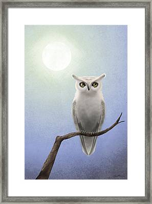 White Owl Framed Print by April Moen