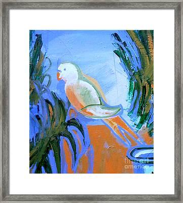 White Parakeet Framed Print by Genevieve Esson