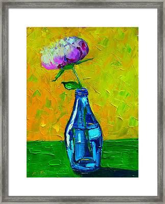 White Peony Into A Blue Bottle Framed Print by Ana Maria Edulescu