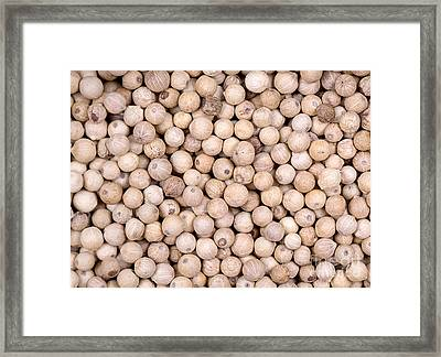 White Peppercorn Background Framed Print by Jane Rix