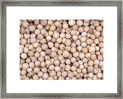 White Peppercorn Background Framed Print