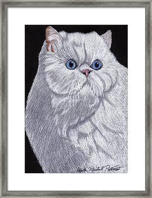 White Persian Vignette Framed Print by Anita Putman