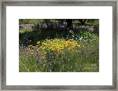 White Picket Fence Garden At Historic Jack London Cottage In Glen Ellen California 5d24560 Framed Print