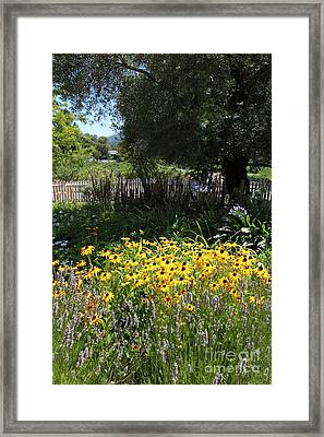 White Picket Fence Garden At Historic Jack London Cottage In Glen Ellen California 5d24561 Framed Print