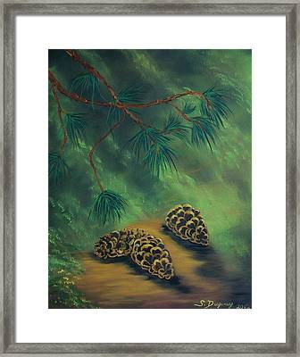 White Pine  And Cones Framed Print