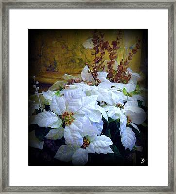 White Poinsettia Framed Print by Michelle Frizzell-Thompson