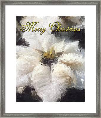 White Poinsettias Christmas Card Framed Print by Jennifer Hotai