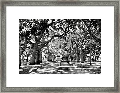 Framed Print featuring the photograph White Point Gardens At Battery Park Charleston Sc Black And White by Lisa Wooten