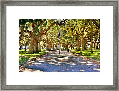 White Point Gardens At Battery Park Charleston Sc Hdr Framed Print