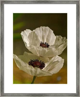 White Poppies Framed Print by Simone Ochrym