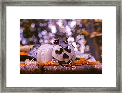 White Pumpkin Framed Print by Aaron Aldrich
