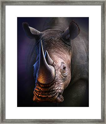 White Rhino Framed Print by Jerry LoFaro