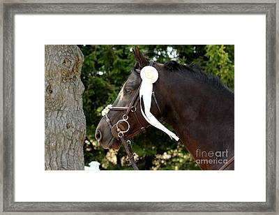 White Ribbon Framed Print