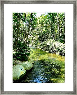 White River Basin Framed Print by Cindy Croal