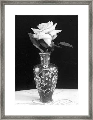 White Rose Antique Vase Framed Print