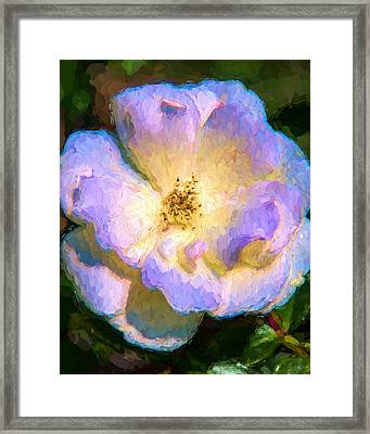 Framed Print featuring the painting White Rose At Sunrise by Ike Krieger