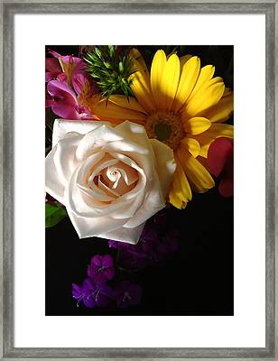 Framed Print featuring the photograph White Rose by Meghan at FireBonnet Art