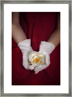 White Rose Framed Print by Joana Kruse