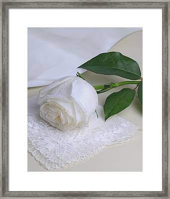 Framed Print featuring the photograph White Rose by Krasimir Tolev