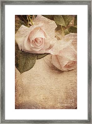 White Roses Framed Print by Jelena Jovanovic