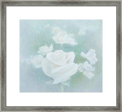 White Roses Framed Print