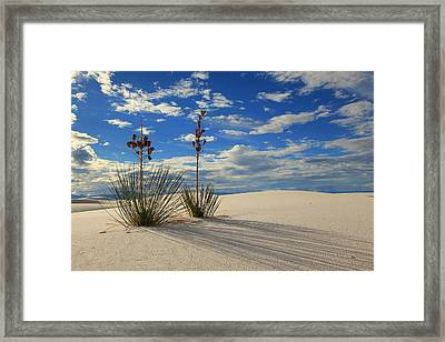 White Sands Afternoon 2 Framed Print by Alan Vance Ley