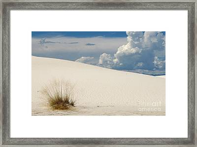 White Sands Blue And White Beauty Framed Print by Marilyn Smith