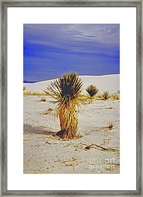 White Sands National Monument Cactus Framed Print by ImagesAsArt Photos And Graphics