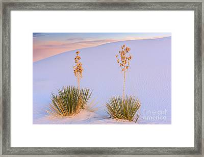 White Sands National Monument Framed Print