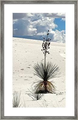 White Sands New Mexico Framed Print by Marilyn Smith