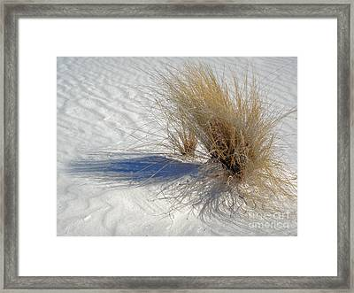 White Sands New Mexico Shadows Framed Print by Gregory Dyer