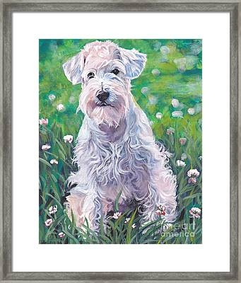 White Schnauzer Framed Print by Lee Ann Shepard