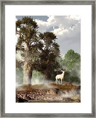 White Stag On A Misty Morning Framed Print by Daniel Eskridge