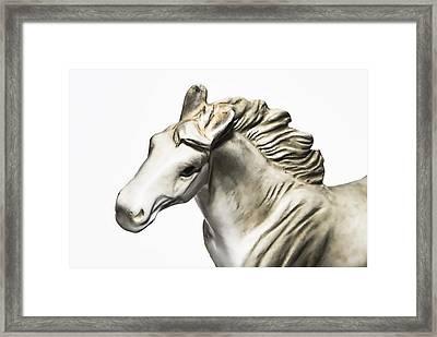 White Stallion Framed Print by Susan Leggett
