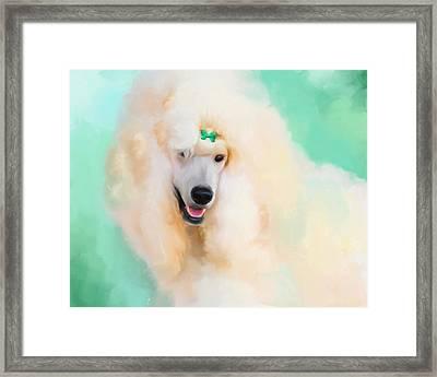 White Standard Poodle Framed Print