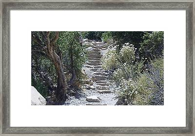 White Steps Framed Print