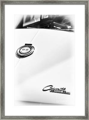 White Sting Ray Framed Print by Tim Gainey