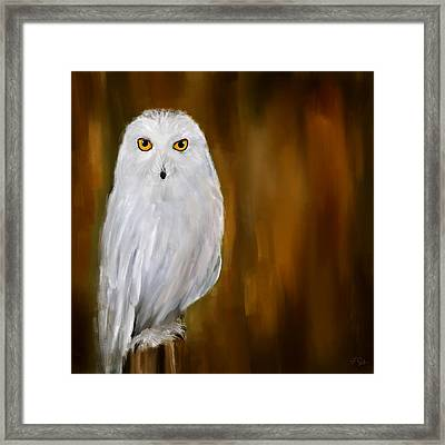 White Stranger Framed Print by Lourry Legarde