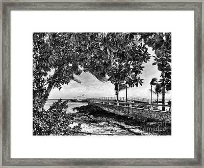 White Street Pier Key West Framed Print by Joan  Minchak